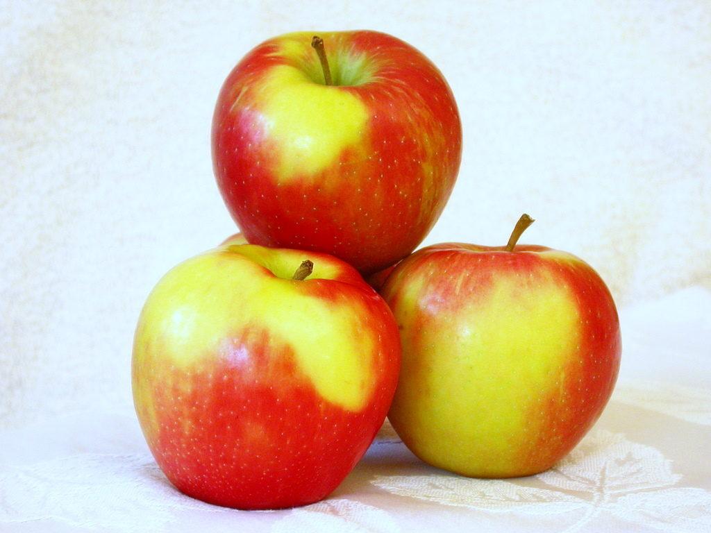 Croustade pommes, brie et érable